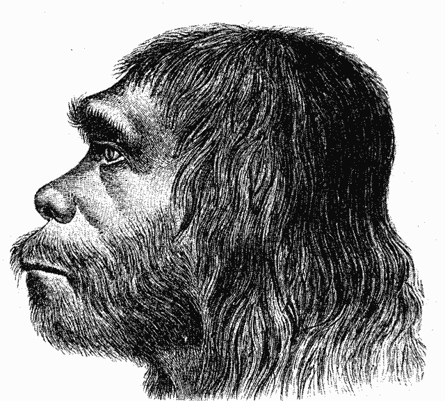 D20 Character Race - Neanderthals